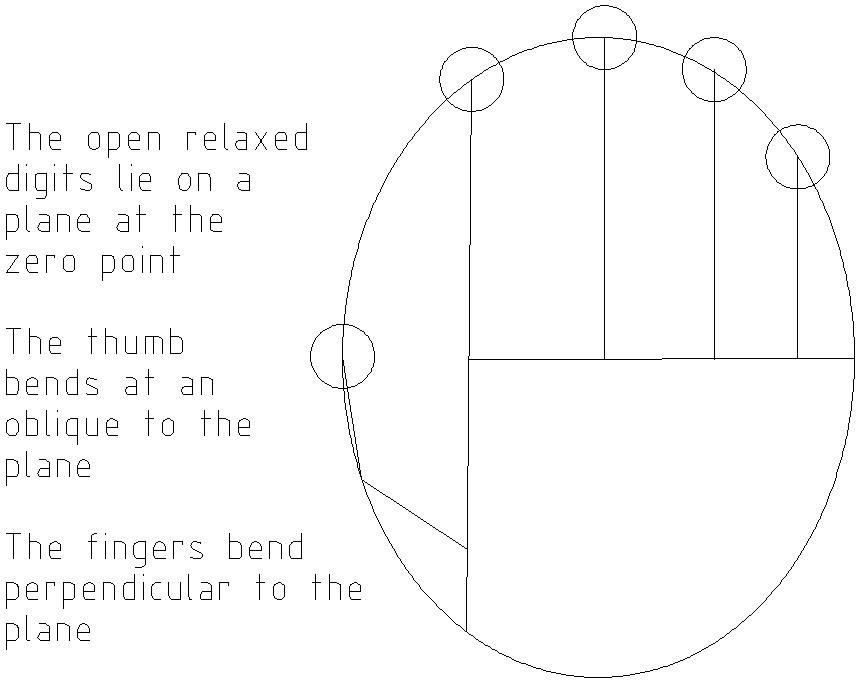 A schematic of a         hand